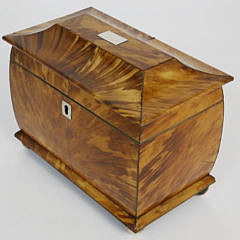 19th c. English Regency Tortoiseshell Double Compartment Tea Caddy