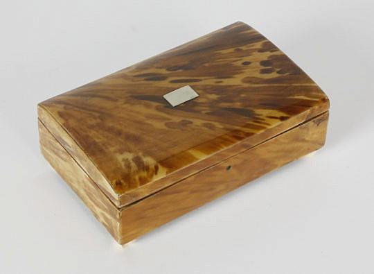 8-4877 Regency Tortoiseshell Box A_MG_3051