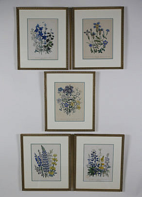 12-4890 Set of 5 English Floral Prints A_MG_3485