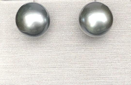 40074 Tahitian Pearl Earrings IMG_4225