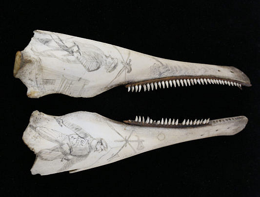 1-4801 Scrimshaw Jawbones A_MG_6449