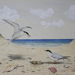 "Dennis Puleston Watercolor on Paper, ""Shorebirds in the Dunes"""