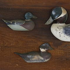 5 Antique Duck Decoys Mounted on a 19th Century Backboard