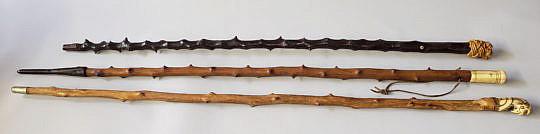 185-4817 Three Walking Sticks A