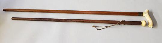 186-4817 Two Walking Sticks A