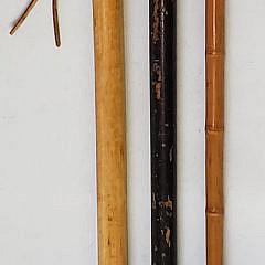39-4820 Three Walking Sticks A