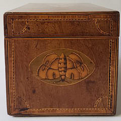 English Satinwood Inlaid Triple Compartment Tea Caddy, 19th Century