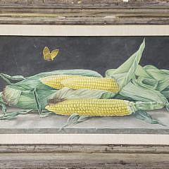 37-2479 Corn Still Life A
